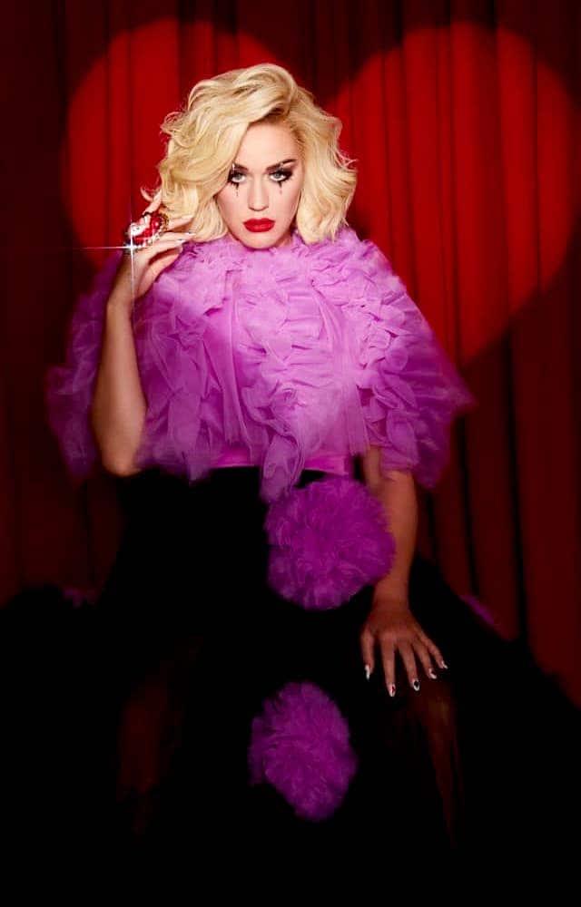 Katy Perry VIP Experience